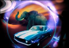 Visio Coleum (Swissrock-II) Tags: photoshopart photoshop photomanipulation digitalart colors elephant car brushes lightroom pixlr december 2016 vision