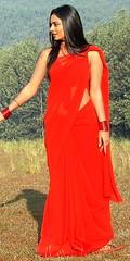 South Actress Deepika Das Hot in Red Sari Photos Set-5 (16)