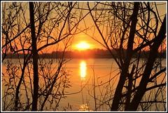 Coucher de soleil hivernal sur la Garonne (Les photos de LN) Tags: coucherdesoleil sunset hivernal nature paysage fleuve garonne aquitaine bordeaux sudouest lumire couleurs nuances
