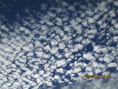 IMG_1025 (StormJunkie2015) Tags: clouds sky weather skies altocumulus cumulus alto meteorology