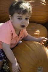 DSC_0123 (jbillings13) Tags: ezekiel pumpkin child chldren boy