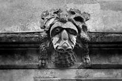 IMG_4126 (oxford_grotesque) Tags: grotesque sad sadface