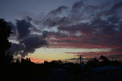 Storms to the left (Images by Jeff - from the sea) Tags: nikon d7200 dusk tamronsp2470mmf28divcusd twilight trees sky clouds bluesky bundaberg palmtrees powerpoles powerlines november 2016