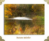 Autumn splendor (bonnie5378) Tags: autumncolors oct2016 river textured coth naturescarousel ngc coth5