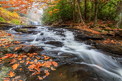 Movement- November 28, 2016 (zachary.locks) Tags: autumn blurred changing coloful colors cy365 down fall flowing gorge ground leaves low motion movement new river waterfalls westvirginia wv zlocks
