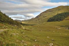 Glen Elchaig upwarts (hr43) Tags: fallsofglomach sallachy loch long dornie wester ross highland scotland