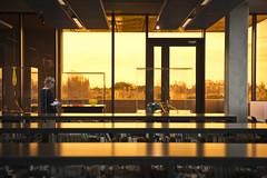 Macalla / Echo _ Exhibition Opening (SteMurray) Tags: approved macalla echo glasdrum exhybitoon stpats stpatricks college dublin irland glasnevin drumcondra ireland irish steie stemurray opening library top floor glass sculpture risn de buitlar