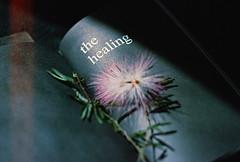 .the wound is the place where the light enters you. (Camila Guerreiro) Tags: film agfa expiredfilm agr400 leica grain flowers book expired camilaguerreiro light rupikaur analog leicar4 lightleak
