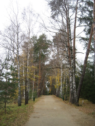 Поленово 2011 005