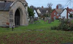 Haslingfield Village (Adam Swaine) Tags: village villages cambs cambsvillages church churchyard uk ukcounties ruralvillages rural englishvillages english england canon swaine