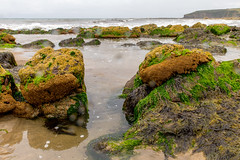rain on lens (ToDoe) Tags: ireland irland rain rainy raindrops rainyday regen regentropfen water sea meer kste strand beach muscheln algen brandung wellen waves
