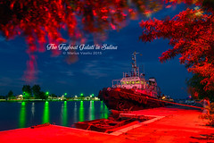 the tug (Bazalai) Tags: blue red night river landscape nightscape romania tugboat bluehour tug danube sulina easternmost danubedelta mariusvasiliu terradesign bazalai