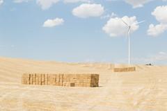 Despus de la cosecha (luisetegt) Tags: verano cosecha burgos paja agricultura camposdecastilla