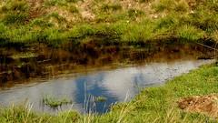 (Tu prova ad avere un mondo nel cuore...) Tags: mountain reflection europa europe hiking reflejo monte montagna  riflesso yansma reflexo    clat  garzirola  europeanmountains valcavargna