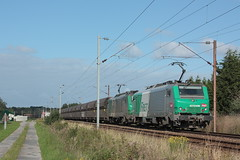 BB 27016M + BB 27065 / Socx (jObiwannn) Tags: train locomotive prima fret ferroviaire
