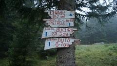 Indicatoare turistice la cabana Gentiana