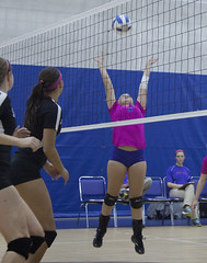 Dig Pink 2015-7998 (Lewis and Clark Community College) Tags: cancer volleyball awareness lc trailblazers womensvolleyball lewisandclarkcommunitycollege