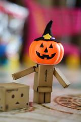 Danboween (ciccioetneo) Tags: halloween pumpkin bokeh shallowdof danbo amazoncojp nikkor50mmf14 toyphotography 31ottobre october31th danboard revoltechdanboard zuccadihalloween nikond3100 ciccioetneo danboween