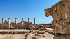 Paphos archeological park (travelmemo.com) Tags: capital cyprus cy archeologicalpark paphos houseofdionysos httptravelmemocomp10325