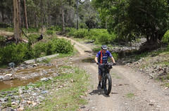 Rossmore Road (Neil Ennis) Tags: road cycling mtb rossmore bnt bicentennialnationaltrail