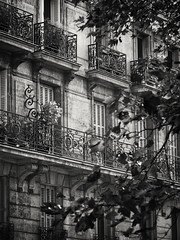 20151004-0259-Edit (www.cjo.info) Tags: urban blackandwhite bw plant paris france building tree window monochrome metal architecture digital blackwhite flora iron europe balcony wroughtiron olympus software ironwork technique zuiko oldbuilding europeanunion apartmentbuilding westerneurope popincourt geolocation 11mearrondissement m43 11tharrondissement geocity boulevardjulesferry silverefexpro microfourthirds geocountry camera:make=olympusimagingcorp mzuiko geostate exif:make=olympusimagingcorp exif:aperture=47 silverefexpro2 m43mount exif:lens=olympusm40150mmf4056r olympusmzuikodigitaled40150mmf4056r nikcollection olympusomdem10 exif:isospeed=100 exif:focallength=74mm camera:model=em10 exif:model=em10 geo:lat=48864911666667 geo:lon=2370315