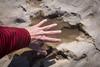 Alyosaurus track (gstreech) Tags: colorado unitedstates dinosaur northamerica picketwirecanyon comanchegrassland troop870