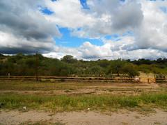 Tranquera (solalcota) Tags: travel viaje cactus sky naturaleza verde green nature argentina relax paisaje cielo nubes cordoba campo tranquera aire libre