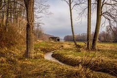 Grand Ravines North - archives (Kevin Povenz) Tags: park bridge river spring stream ottawa april 2014 westmichigan ottawacounty kevinpovenz ottawacountyparks grandravinesnorth