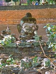 buddhas at wat u mong chiang mai (retiredbutcycling) Tags: buddha mai u wat mongchiang