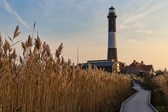 Morning at the Lighthouse (Bob90901) Tags: morning lighthouse fireislandnationalseashore longisland newyork autumn rpg90901 reeds canon 6d canonef2470mmf28liiusm 2016 october 0807 fireislandlighthouse