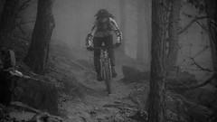 Bike Wochenende im Vinschgau 2016 (chorge1972) Tags: fujifilm xt2 traildog bike