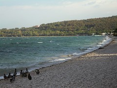 The quiet before the storm (Marythere *on/off*) Tags: beach beforethestorm ducks eveninglight lakescape gardalake mood coast