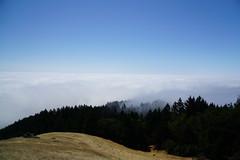 Mount Tamalpais: Rock Spring to Stinson Beach Hike (17) (Planet Q) Tags: mttam marinheadlands