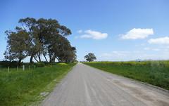 Follow that road (The Pocket Rocket) Tags: avalon victoria australia pointwilson