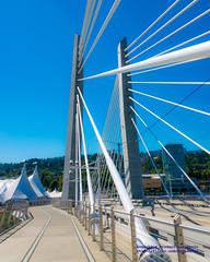 Large Tents & Cable-Stayed Bridge Towers Streak Into Portlandia Blue Sky (AvgeekJoe) Tags: bridgeofthepeople d5300 dslr nikon nikond5300 oregon portland tilikumcrossing tilikumcrossingbridgeofthepeople willametteriver bridge cablestayedbridge transitbridge