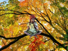 Girl in a Fall Tree (Rusty Russ) Tags: girl statue read fall autumn colored tree leave up high colorful day streetart digital graffiti europe mer lago window flickr country landschaft mare analog bright happy la paysage colour eos scenic america cielo market hill world sunset beach water sky flower red nature blue night white green art light sun cloud park landscape summer city yellow people pink house old new photoshop google bing yahoo stumbleupon getty