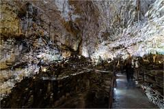 161016 685 grotta gigante (# andrea mometti | photographia) Tags: grotta gigante trieste sgonico caverna stalagtiti stalagmiti umidit