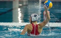 1A150039 (roel.ubels) Tags: uzsc zpb hl productions waterpolo eredivisie utrecht krommerijn 2016 sport topsport