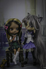 School Daze (twilitize) Tags: adorable adventure art awesome beautiful beauty cool cute cutie canon camera canonphotography dolls doll dolly darling dollphotography dal girl girls girly good groove happy kali hope pullip pop popular pullips pullipphotography playtime photography