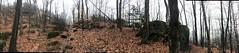 IMG_4926 (pwbaker) Tags: adirondacks adirondack mountain hiking scenic newyork outdoors pano iphone