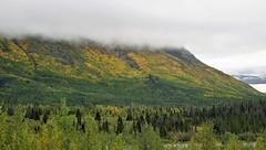 DSC09943 (2) Fall Leaves (Allen Woosley) Tags: ft seward haines ak yukon territory glaciers sunrise fall leaves fire station cloudsstormssunsetssunrises