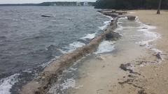 20161006_161448 (rolyrol1982) Tags: sea wall board walk hurricane matthew 2016 florida keys key largo flooding flood storm surge gulf mexico