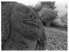 Emilia Romagna (Mark Dries) Tags: markguitarphoto markdries emilaromagna italy darkroomprint kodakretina1a 35mm xenar 50mm f35