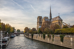 Notra Dame from the Pont de l'Archevch (The Aquanaught) Tags: pontdelarchevch autumn riverseine notredame family paris season location people place pontdelarchevch suzi ledefrance france fr