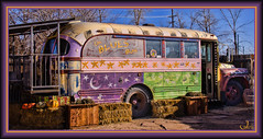 Hapyy Fence Friday (Jmarie999) Tags: bus vintagebus