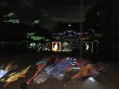 Kodaiji temple, zen garden Kyoto (Sarina-chan) Tags: kodaijitemple kyoto japan giappone tempio momijigari marple acero projections lights proiezione zengarden giardinozen