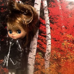 Blythe-a-Day November#8&#10 &#13:Fall Colors&Trees and Leaves&Nature: Marisia's Imagination