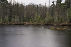 Hawk Lake (David J. T.) Tags: lake long exposure fall northwoods mcnaughton wisconsin