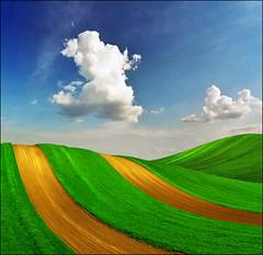Happy dog - Panonnian fantasy (Katarina 2353) Tags: green clouds spring fields serbiainspired