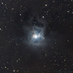 Iris nebula (Mickut) Tags: nebula c8 ngc7023 irisnebula reflectionnebula astrometrydotnet:status=solved komakallio sxvrh18 astrometrydotnet:id=nova1221156
